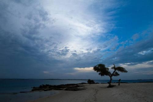 NACALA - nascer do sol numa praia