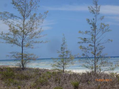 RELAMPAZO - vista da praia