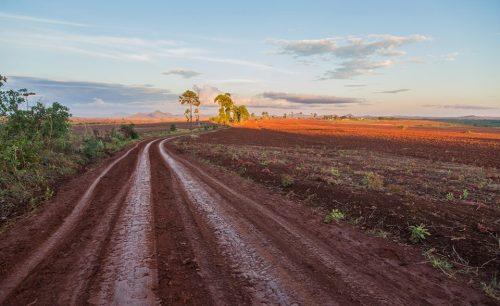 NIASSA - paisagem