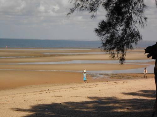 ZALALA - vista da praia